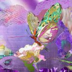 CP014 Butterfly 1