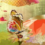 CP015 Butterfly 2