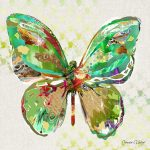 CP016 Butterfly 3