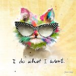 CSS015 I Do What I Want Cat