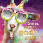 CSS037 Goat All Day